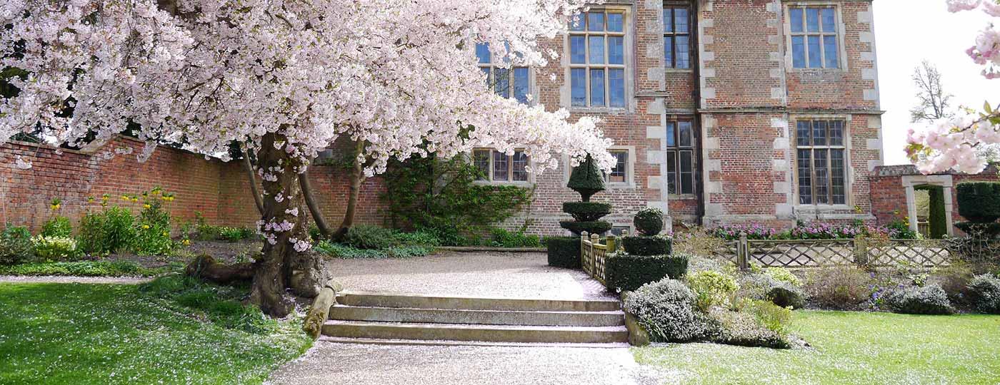 Doddington Hall Cherry Blossom
